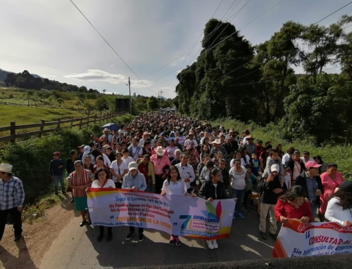 Guatemala's Land Defenders Are Still Their Own Best Defense