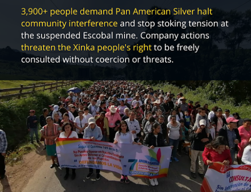 Thousands Call on Pan American Silver to Respect Xinka Rights and End Community Interference